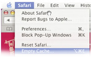 Technical Support - Empty Cache Safari