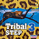 TRIBAL STEP 03